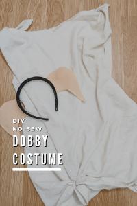 DIY Dobby Costume